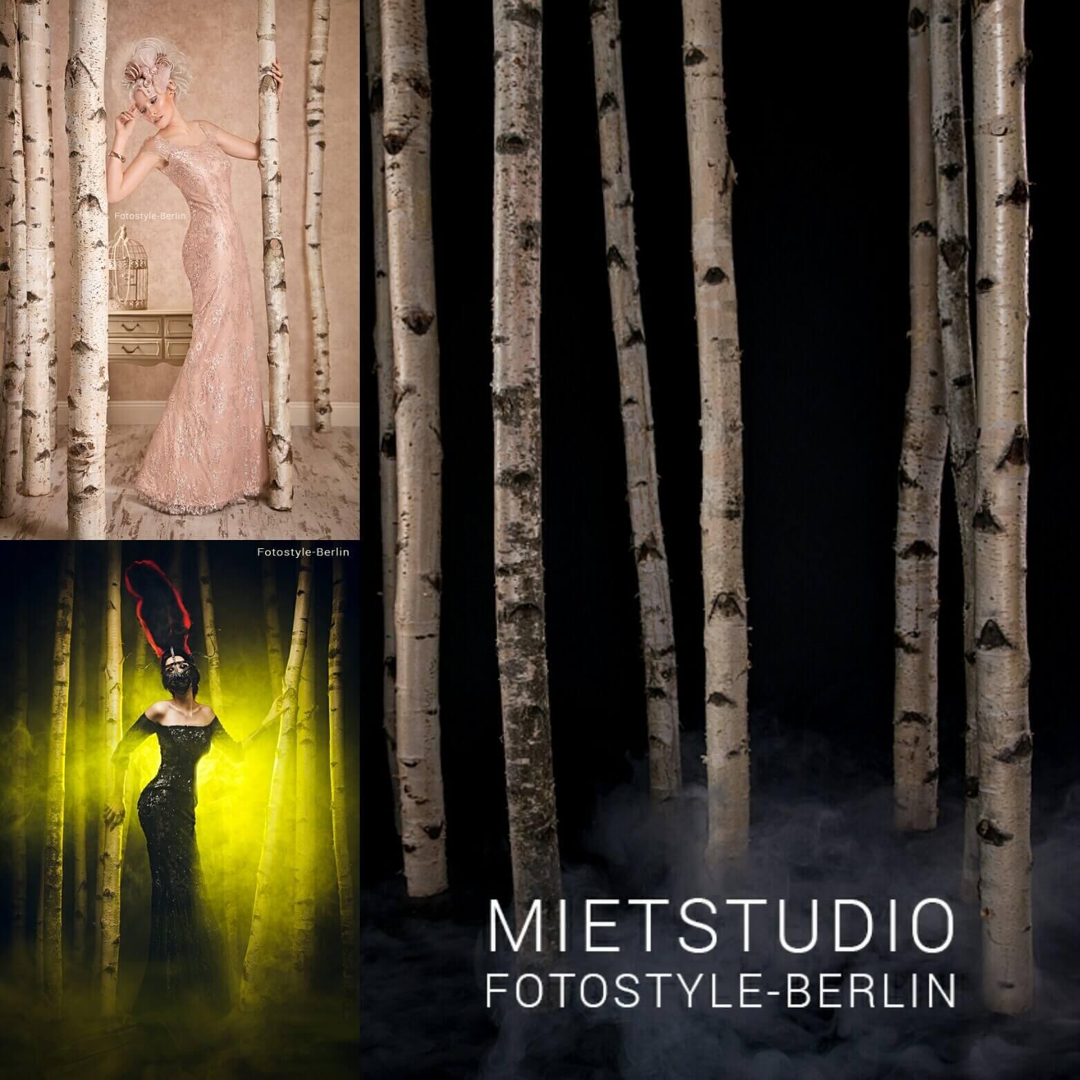 Fotostudio mieten in Berlin - Birkenwald